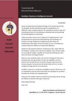 1 Business Intelligence konsult