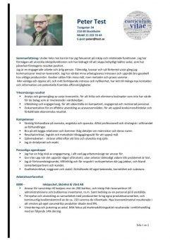 1 CV_kompetens_Med_Sammanfattning_Och_Resultat