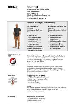 1 CV med omdömen och logga - 2 sidor