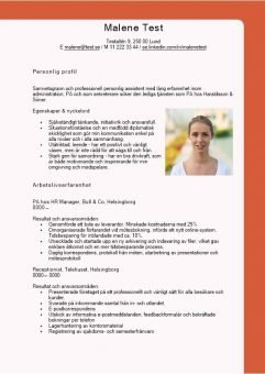 1 CV_med_personlig_profil_Nyckelord
