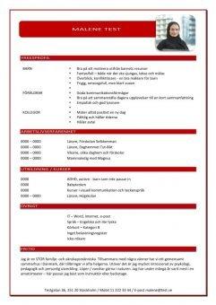 1 CV_med_yrkesprofil_röd