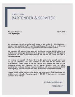 Bartender servitör