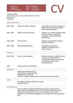 CV Kronologiskt - enkel med streckade linjer