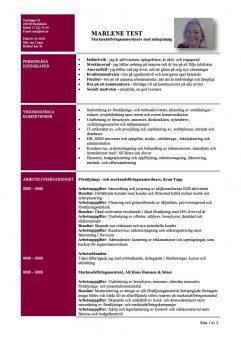 CV funktionellt - med personliga och yrkesmassiga egenskaper - 2 sidor