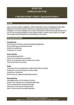 CV funktionellt med yrkeskvalifikationer - 2 sidor