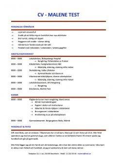 CV Kronologiskt med kompetensprofil