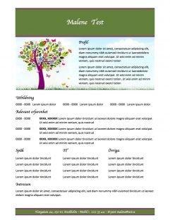 CV mall med profil - grön