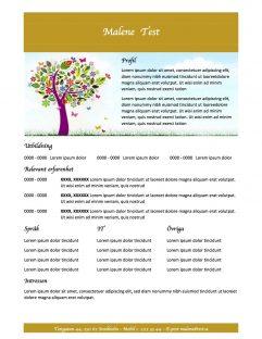 CV mall med profil