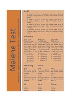 CV mall - tabell - orange