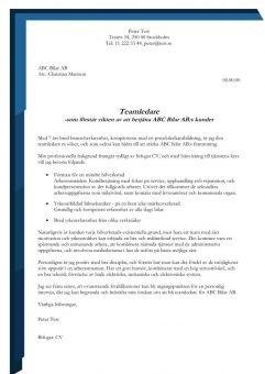 1 Teamledare_service_bilverkstad