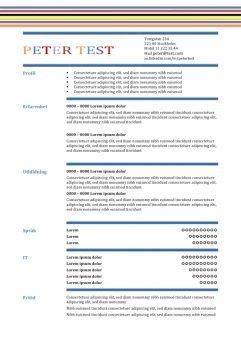 1 CV-mall i tabellform med fargade linjer