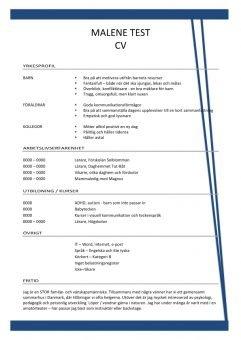 1 CV mall med yrkesprofil bla linje