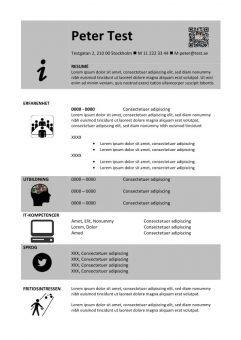 Kronologiskt CV mall med ikoner
