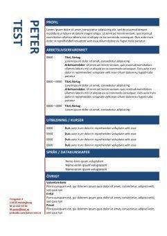 1 Kronologisk CV mall i tabellen bla