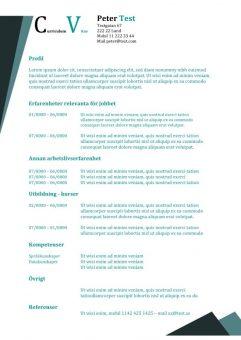 CV-mall med 2 arbetserfarenheter