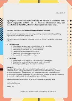 1 HR-konsult_med_internationell_erfarenhet