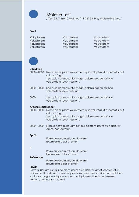 1 CV layout - blå