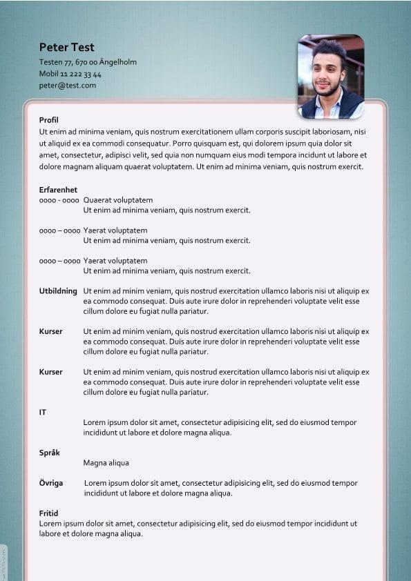 1 Layout CV - Erfarenhet
