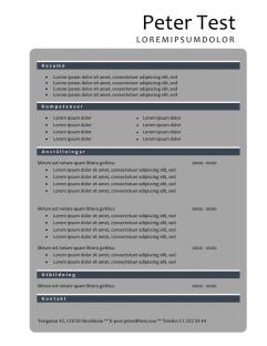 2-CV mall med grå färg